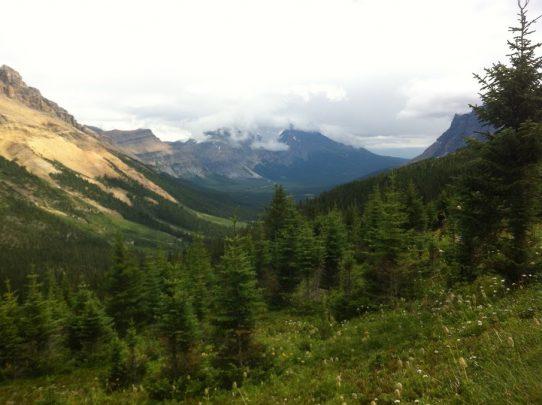 Hiking to Helen Lake in Jasper National Park