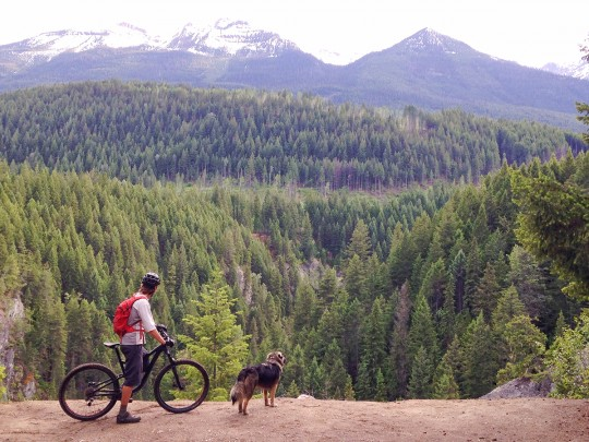 Mountain Biking in Golden British Columbia