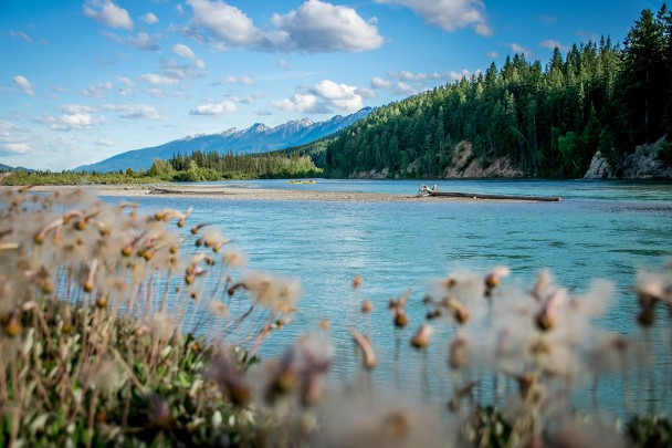 Kayak tours on the Kicking Horse and Columbia Rivers in Golden BC