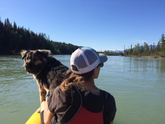 Paddling the Columbia River in Golden, B.C.