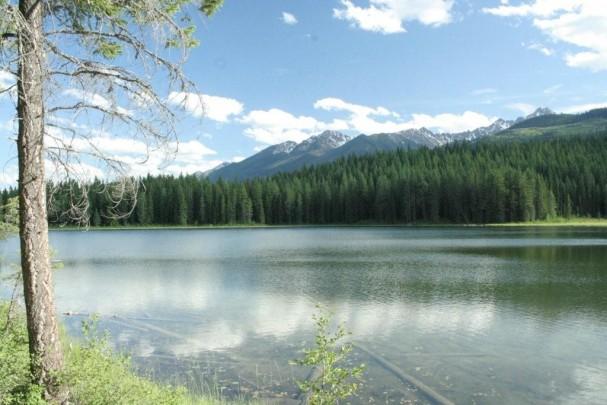Cedar Lake in Golden British Columbia