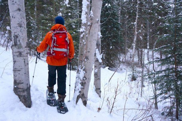 Snowshoeing at Cedar Lake in Golden, BC