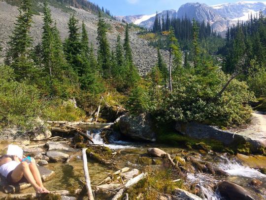 Asulkan Ridge Hike in Glacier National Park Canada