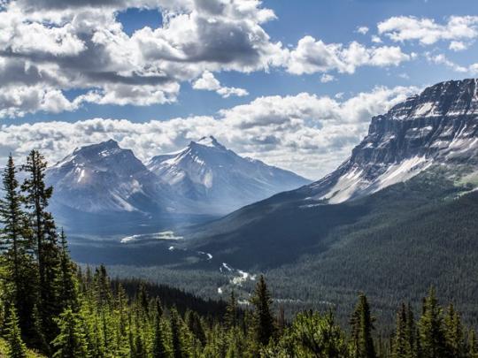 View of Helen Lake on Icefieldds Parkway Alberta