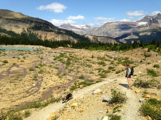 Hiking the Iceline Trail in Yoho National Park