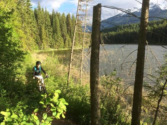 Single track mountain biking in Golden BC