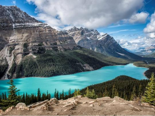 View of Peyto Lake on Icefields Parkway Alberta