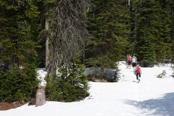 Hiking Yoho Lake Trail in Yoho National Park