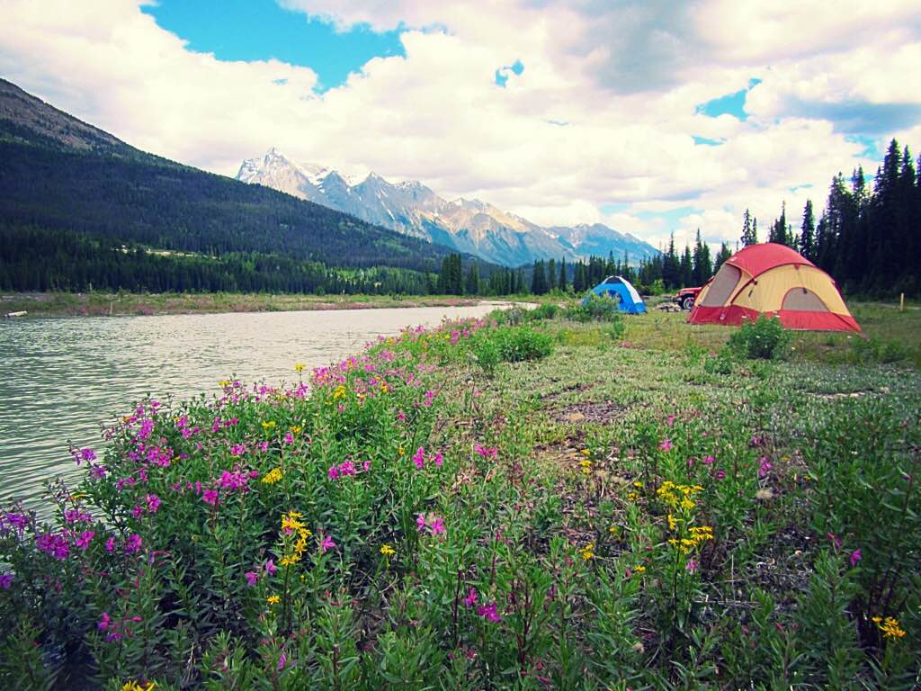 Free camping site on Kicking Horse River in Golden BC