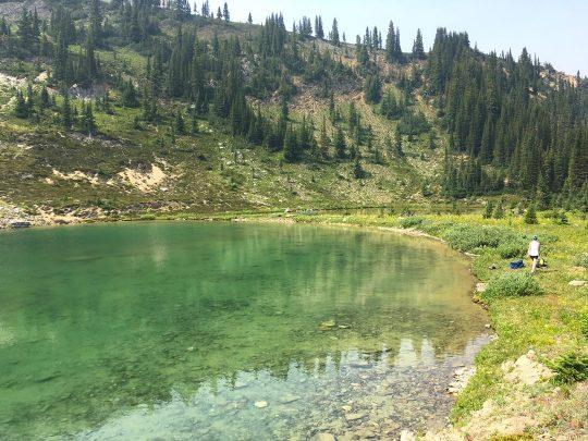 lake at twelve mile hike golden bc