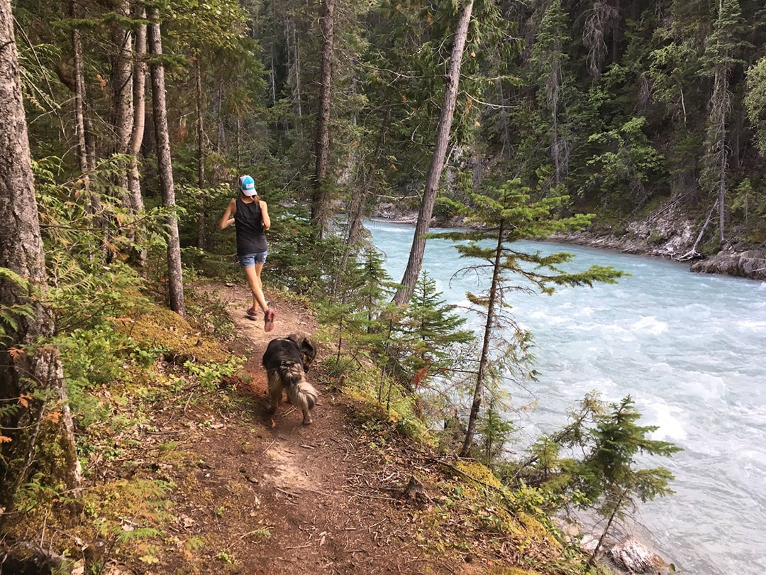 Trail running Golden BC