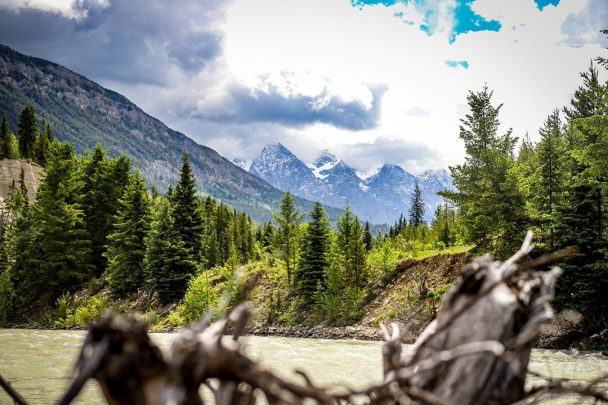 mountain views from kicking horse river