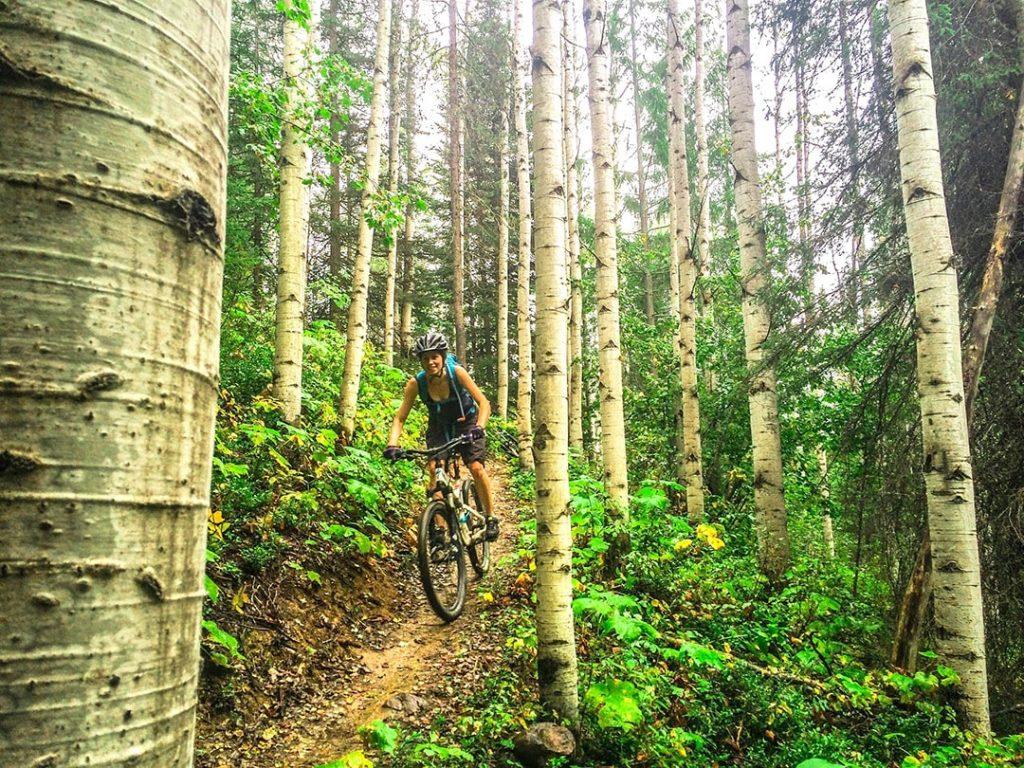 Biking Moonraker Trails, Golden BC