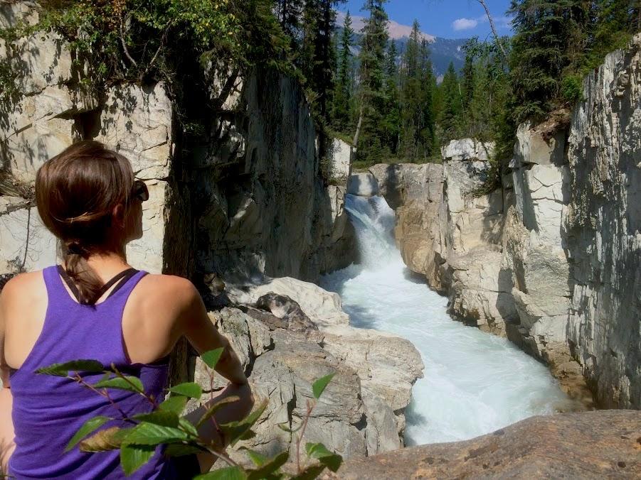 Looking at Thompson Falls, Golden BC
