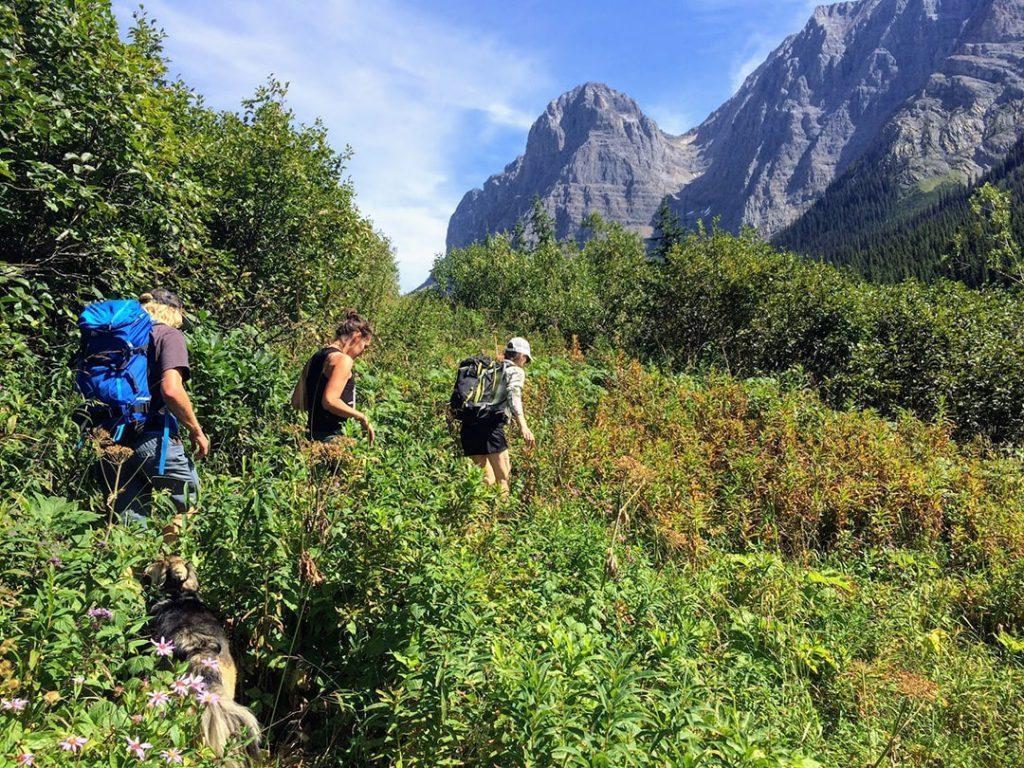 Friends hiking to Rockwall in Kootenay National Park