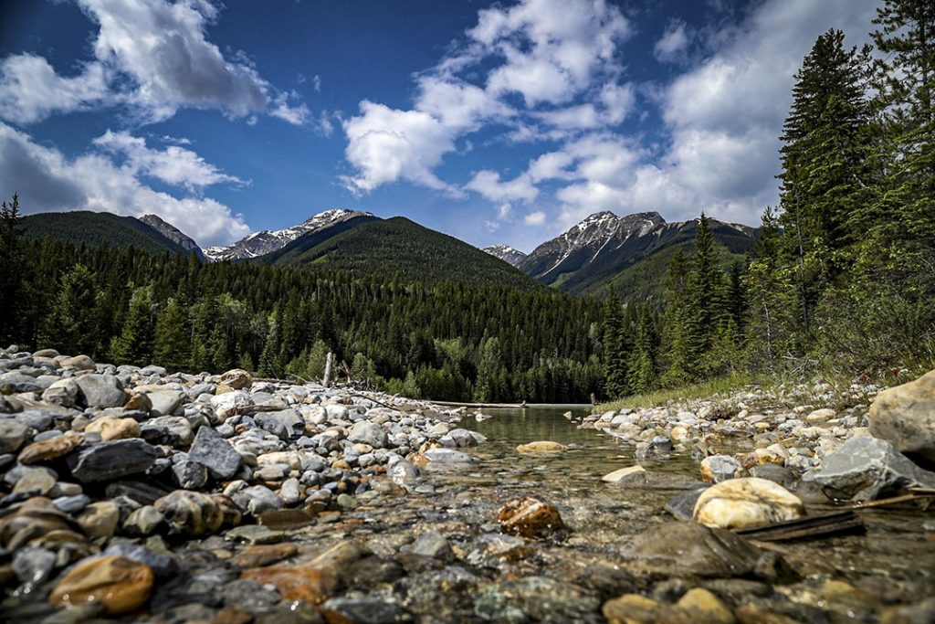 View of Kicking Horse River and Canadian Rocky Mountains