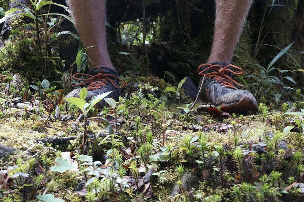 Hiking boots or trail runners are a must when packing for a trip to the Canadian Rocky Mountains